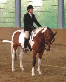 alderfarn dressage